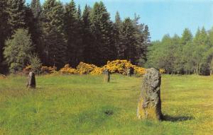 Scotland Postcard The Clansmens Graves, Culloden Moor R37