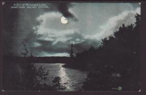 Muskoka Lake at Night,Mukoka,ON,Canada Postcard