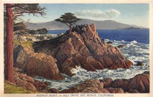 Midway point, 17 Mile Drive, Del Monte, California, Vintage Postcard, Unused