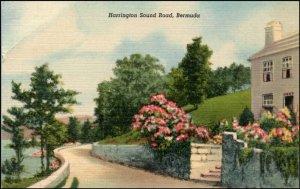 Harrington Sound Road Bermuda Linen Postcard