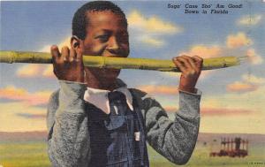 E10/ Black Americana Postcard Linen Florida Boy Sugar Cane Sho Am Good 12