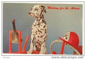 Firmen's Dalmation dog is  Waiting for the Alarm,  40-60s