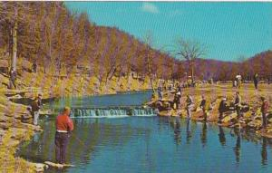Missouri Cassville Early Spring Trout Fishing Roaring River State Park