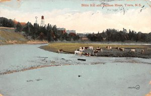 Biblle Hill and Salmon River Truro Postal Used Unknown, Missing Stamp