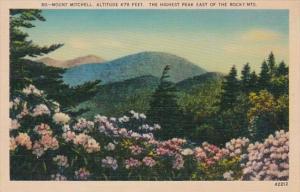 Colorado Mount Mitchell Highest Peak In Rocky Mountains