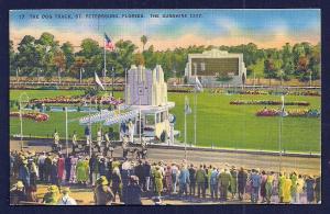 Dog Racing Track @ St Petersburg FL used c1947