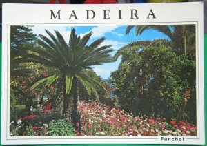 Portugal Madeira Funchal Jardim Tropical - unposted