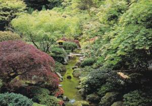 Oregon Portland Japanese Garden Creek In The Springtime