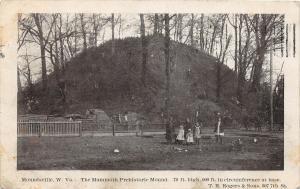 F23 Moundsville West Virginia Postcard 1907 Indian Mound Native American 5
