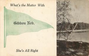 What's the Matter With Gibbon Nebraska~She's All Right~1912 Pennant Postcard