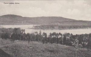 Connecticut Twin Lake Albertype
