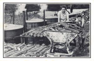 Nostalgia Postcard Land Girls at a Charcoal Plant c1949 Reproduction Card NS22