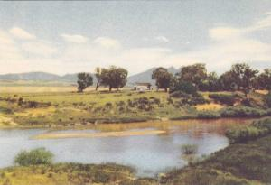 Great Berg River, Riebeeck Casteel-Hermon , C.P. , South Africa , 1930s