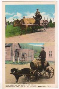 Old Norman Ox Cart, Quebec