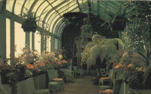 Inside the Conservatory at the Empress Hotel, Victoria, British Columbia, Can...