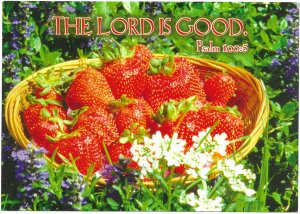 US  unused. Encouragement Card. The LORD is Good.