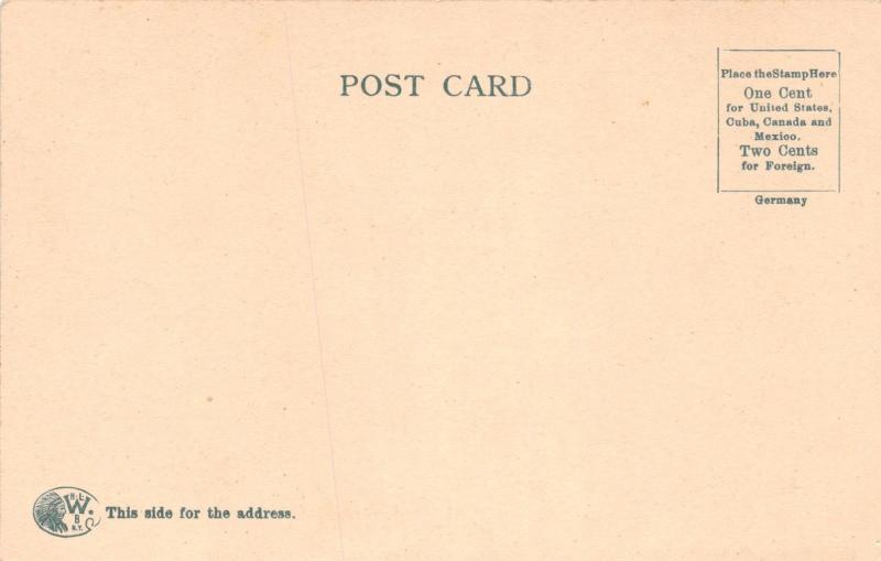 RUTLAND VERMONT CITY HOSPITAL~I CARBINE PUBL WOEHLER POSTCARD c1900s