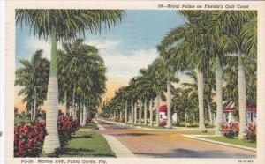 Florida Punta Gorda Royal Palms Along Marion Avenue 1941 Curteich