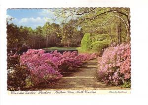 Clarendon Gardens, Pinehurst, Southern Pines, North Carolina, Photo Jim Doane