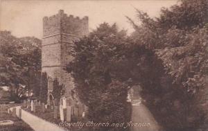 England Clovelly Church and Avenue