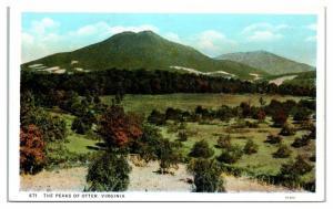 Early 1900s Peaks of Otter, VA Postcard