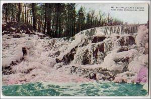 NY - New York City. Falls Lake Agassiz, NY Zoological Park