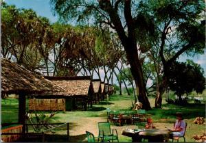 Cottar's Camp Galana River Tsavo Park Kenya Africa Unused Vintage Postcard D41