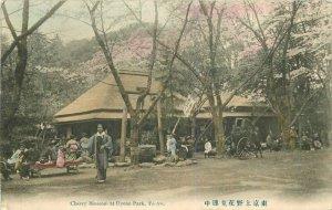 Cherry Blossoms Uyeno Park Tokyo 1907 Japan Postcard hand colored 7723