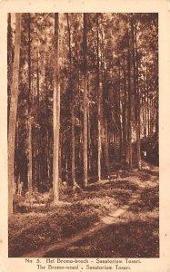 Bromo Wood Sanatorium Tosari Indonesia, Republik Indonesia Unused
