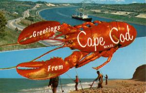 MA - Greetings from Cape Cod