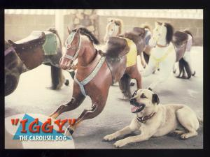 Watch Hill, Rhode Island/RI Postcard, Iggy The Flying-Horse Carousel Dog