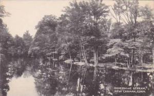 Connecticut New Canaan Silvermine Stream