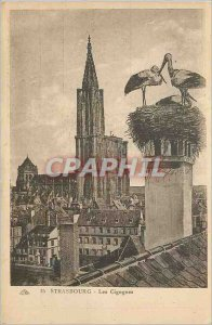 Postcard The Old Strasbourg Nesting