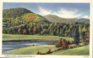 Camel's Hump - Green Mountains VT, Vermont - 1935 Linen