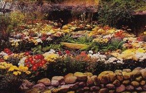 Fall Flower Show Phipps Conservatory Pittsburg Pennsylvania