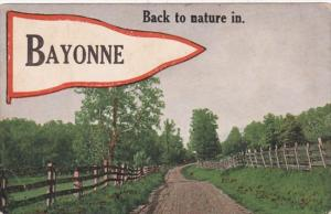 New Jersey Bayonne Back To Nature Pennant Series