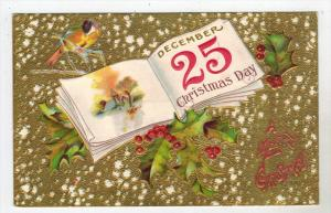 Christmas  December 25 Calendar  Page