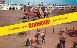 Roundup Montana~Banner Greetings~Cattle Roundup~1950s Postcard