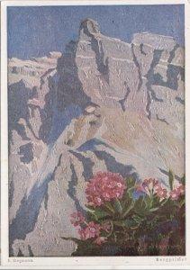 Erich Stegmann, Bergprimel, unused Postcard