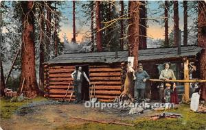 Old Vintage Hunting Postcard Post Card The Forest Ranger's Cabin Unused