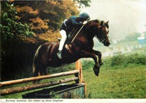 Burstye Kythnos horse ridden by Alice Clapham jockey postcard