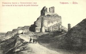 georgia russia, TBILISI TIFLIS, Botanical Garden and Tower Ruins 1910s Postcard