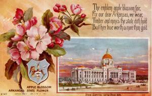 State Flower & Capitol - Arkansas, Apple Blossom