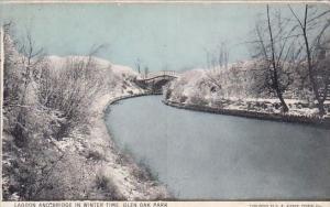Illinois Glen Oak Park Lagoon And Bridge In Winter Time