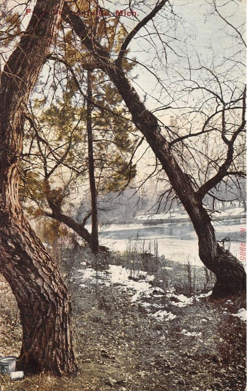 Vermontville Michigan~Evergreen & Bare Trees Along River~Snow on Ground~1909 PC