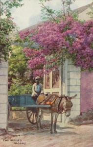 Bahamas Nassau Two Natives Local Man & Donkey Cart 1965