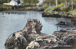 Lion Rock Bermuda