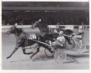 ROOSEVELT RACEWAY, Harness Horse Race , MALICE winner, 1981