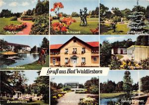 BG9882 gruss aus bad waldliesborn  multi views   germany