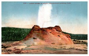 Wyoming  Yellowstone Park Castle Geyser